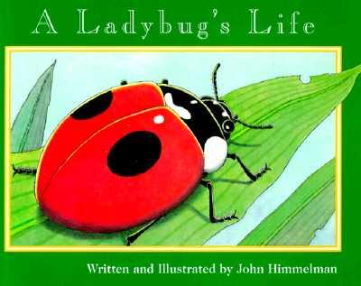 A Ladybug's Life By Himmelman, John
